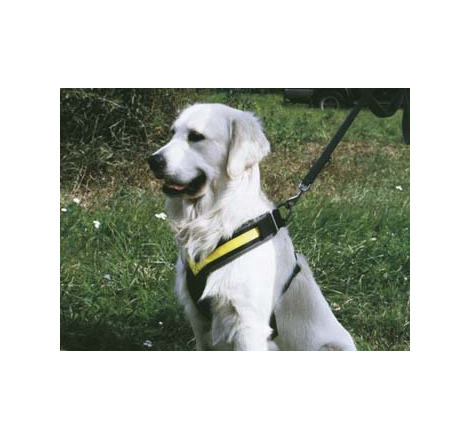 Hundsele MiM Allsafe Small ->15 kg